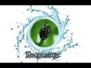 ТЕОДОКСУС. превосходный борец с водорослями. санитар аквариума