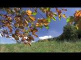 Жан Татлян - Осенний свет (1966)
