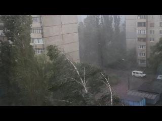 Смерть человека и поваленные деревья-последствия стихии в Харькове