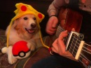 Pokemon Theme Fingerstyle Guitar Tabs (Trench Maple)