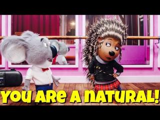 Фраза YOU ARE A NATURAL! из мультфильма Sing / Зверопой