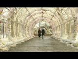 «Доброе утро» на Первом канале. День проявления спонтанной доброты