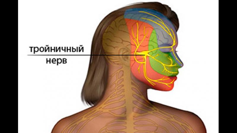 тройничный нерв massagek66.ru