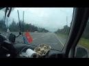ТЯЖКО Крым - СПБ / Возвращение домой