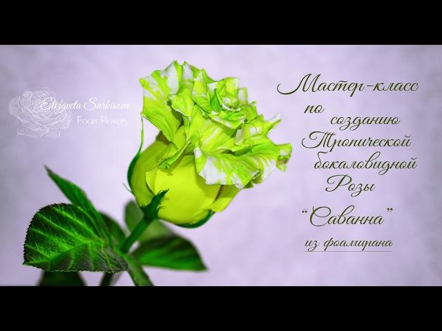 МК Роза Саванна из фоамирана. Часть 1. Автор Елизавета Саркисова