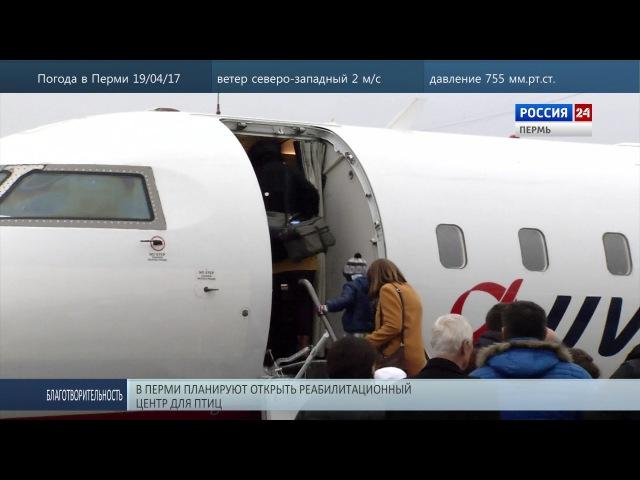 ЮТэйр отказалась от рейсов из Перми в Москву и Анапу