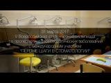 V Всероссийская студенческая олимпиада по пропедевтике стоматологич