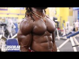 Marc-Arthur Dautruchee SHOULDERS &amp ARMS