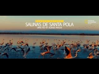 Парк Натураль Салинес де Санта Пола
