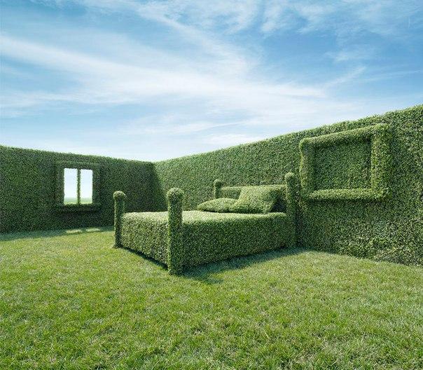 Экологичный дом