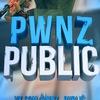 #pwnz_public Counter-Strike 1.6