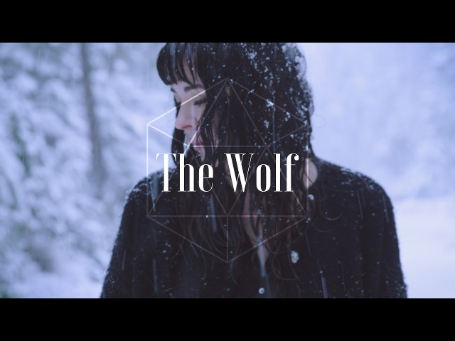 Mumford Sons - The Wolf (Ladysse Cover)