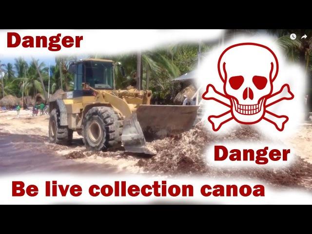 Be Live Collection Canoa punta cana canoe ЖЕСТЬ СМОТРИ ДО КОНЦА Доминикана Пунта кана