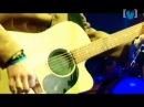 Silverchair - Tuna In The Brine Live Newcastle