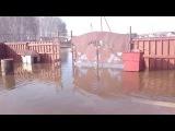 Коттеджи в Омске затопило водами с полей «Омского бекона»