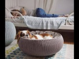 Furniture for Pets-luxury Pets houses for small Cat Dogs