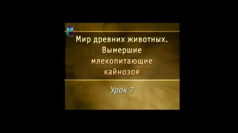 Урок 7. Древние непарнокопытные