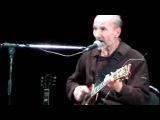 Петр Мамонов - Серый голубь
