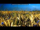 «Васильки» под музыку ГРУППА СПЕЙС ХИТЫ 80-Х.... - Очень хорошая мелодия.. Picrolla