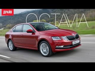 Skoda Octavia — комментарий к тесту
