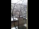 опять зимушка зима!❄❄❄❄❄❄❄