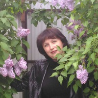 Елена Нефёдова