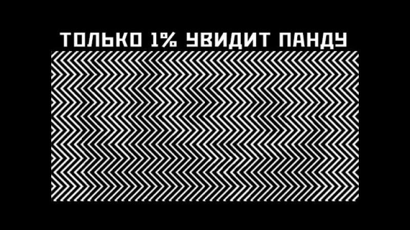 ТЕСТ НА ЗРЕНИЕ 10 ФОТО КОТОРЫЕ ПРОВЕРЯТ ТВОЕ ЗРЕНИЕ