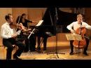 Spiegel Trio Tchaikovsky piano trio in a minor op.50 FULL HD