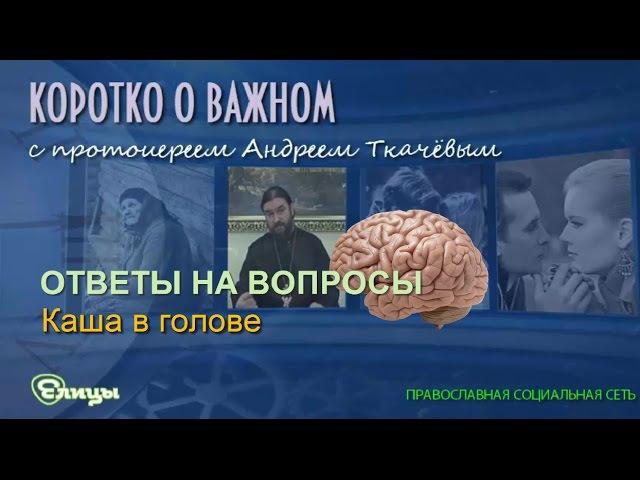 Каша в голове. Протоиерей Андрей Ткачев