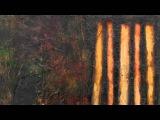 Carl Philipp Emanuel Bach-Harpsichord Concerto n