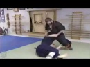 👊HAPKIDO ► Best Grand Master Moments Christopher Garland ★
