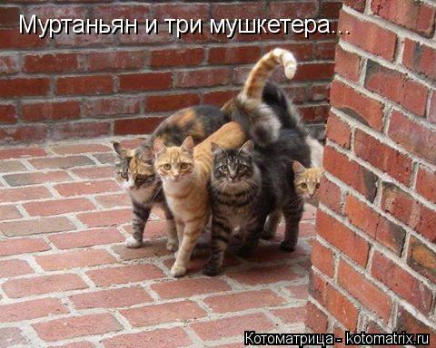 https://pp.vk.me/c626519/v626519096/9c0c/qlZ4IV756Vs.jpg