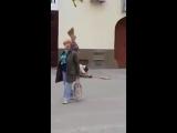 Дуэль на метлах по-сербски