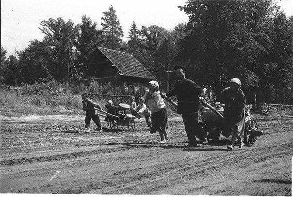 Накануне революции русское земледелие было в полном