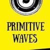PRIMITIVE WAVES - Сведение и Мастеринг