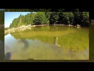 Душещепательная ловля реально огромной щуки