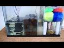 5.5 Gallon Nano Wet/Dry Sump