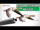 Дульное сужение для охоты на гуся! Videoohota