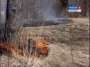 В Костроме за сутки произошло сразу семь бесконтрольных палов травы
