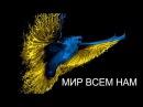 Донецкий Аеропорт,Воины Украины 2017,АТО,Армия Украины,ЗСУ,ДАП,