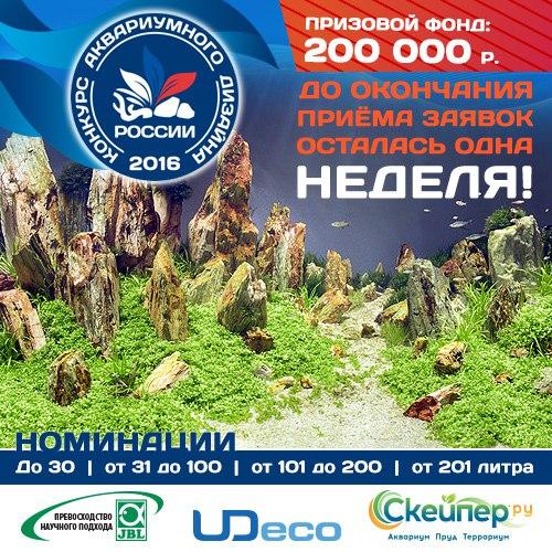 Конкурс аквариумного дизайна России 2016 W1vMkNuzGjw