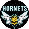 Hornets Gaming Community