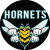 Hornets Gaming Community