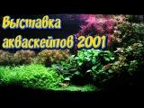 Самые красивые аквариумы 2001.  Выставка Акваскейп конкурса  IAPLC 2001