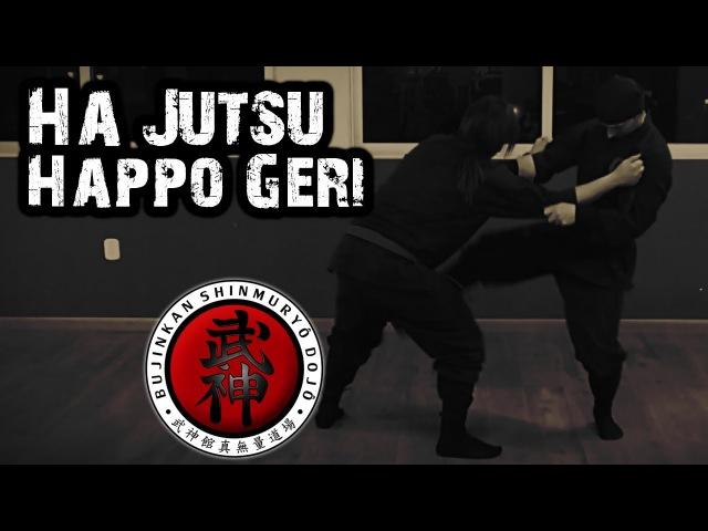 Ninjutsu | Ha Jutsu - Happo Geri