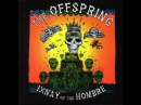 The Offspring - I Choose