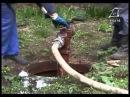 У місті триває планова промивка каналізації