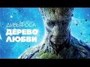 ДИВЬЯРОСА Дерево любви Видео от наших друзей JIVA FILMS