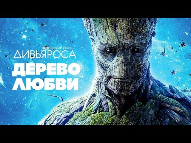 ДИВЬЯРОСА. Дерево любви. Видео от наших друзей JIVA FILMS