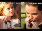 Exclusive! Angelina Jolie eating Scorpions and Tarantulas with kids